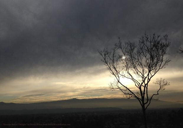 BreathsBeforeTwilight_By_RobinWoods
