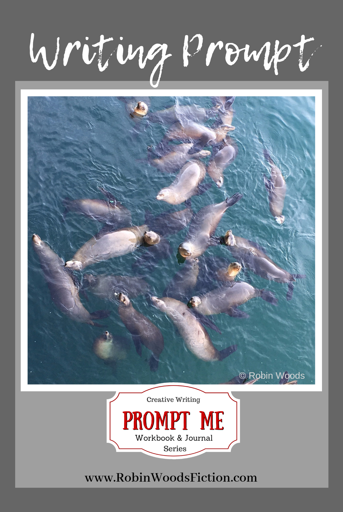 Sea lions in Santa Cruz, CA. Photo Writing Prompts by Robin Woods.